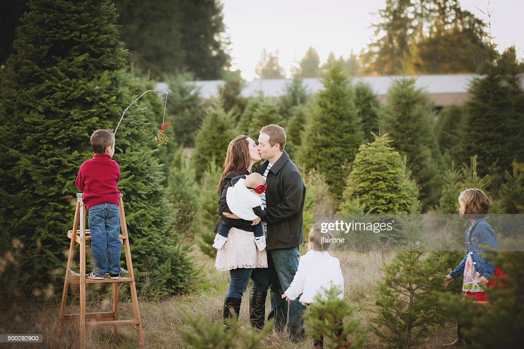 Large Family Christmas Card Photo In Christmas Tree Farm High Res Stock Photo Getty Images
