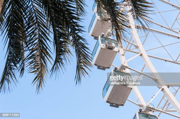 large ferris wheel in malaga, spain. observation weel with a panorama of the tropical city and palm trees - istock stock-fotos und bilder