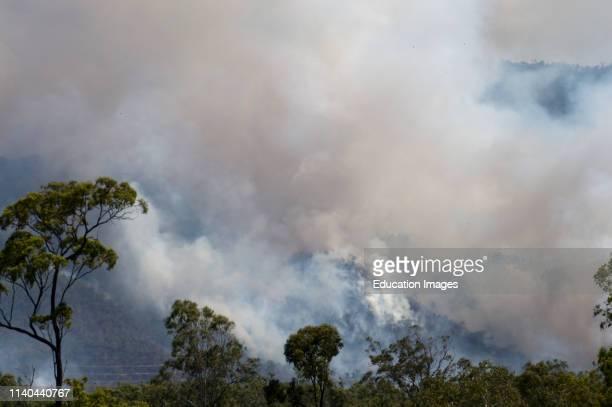 Large forest fire near Cairns, Queensland, Australia.