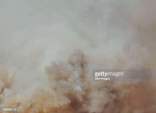 a large forest fire near ellensburg in kittitas county, washington state, usa. - bushfires stock photos and pictures