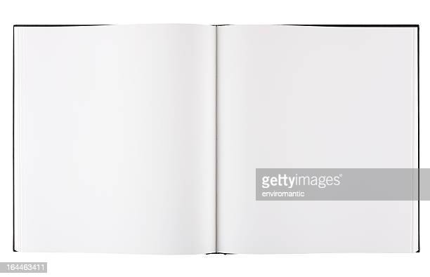 Large format blank coffee table book with clipping path.