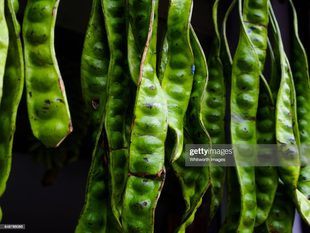 Large green bitter beans at market stall in Perak, Malaysia : Stock Photo