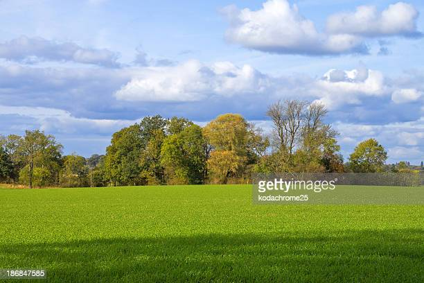 large green field and cloudy blue sky  - the slants stock pictures, royalty-free photos & images