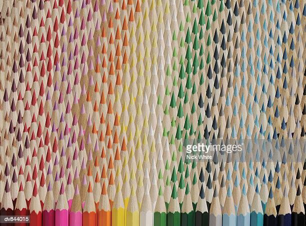 large group of colouring pencils arranged in lines - colouring bildbanksfoton och bilder