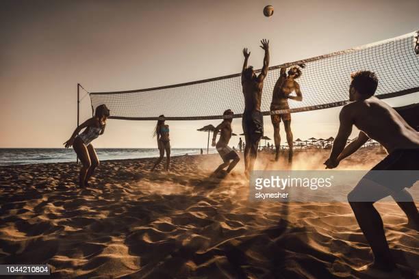 große gruppe von freunden spielen beach-volleyball bei sonnenuntergang. - strand volleyball stock-fotos und bilder