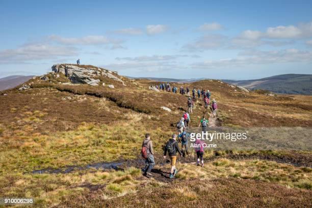 Large group of hikers walking into distance at the Wicklow Mountains, Ireland, on a sunny day