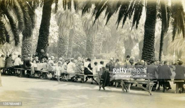 Large group of men, women, and children sit on benches beneath a palm tree for an Iowa-By-The-Sea Picnic event in Long Beach, California, circa 1929.
