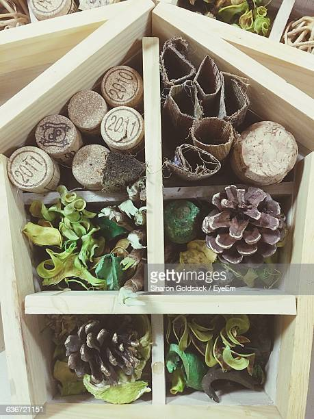 large group of objects in bee house - oise stock photos and pictures