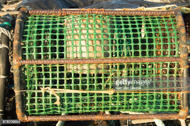 Large group of traps to fish