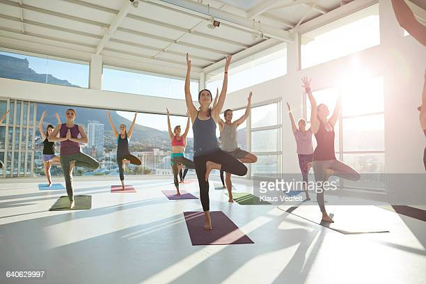 large group of yogis balancing on 1 leg - tree position stock photos and pictures