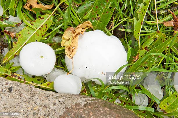Große Hailstones