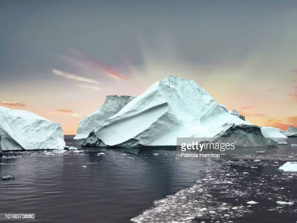 Large icebergs in Scoresbysund, Greenland