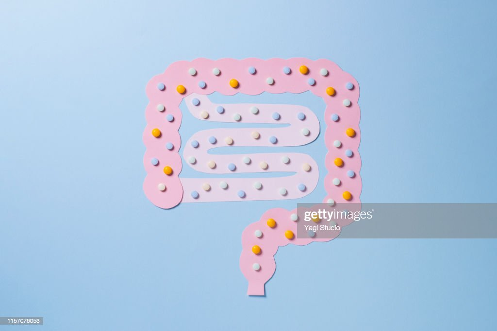 Large intestine and small intestine and medicine : Stock Photo