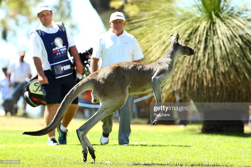 2016 Perth International - Day 2