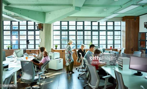 large light and airy modern open plan office with staff - wide shot stock pictures, royalty-free photos & images