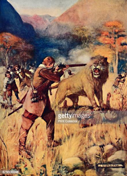 A Large Lion sprung upon one of the Men' 1909 From Romance of Empire South Africa by Ian D Colwin [T C E C Jack London 1909] Artist Joseph Ratcliffe...