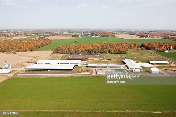 Large Modern Dairy Farm Fall Aerial