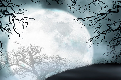 Large Moon Rises Over Small Hill Framed By Bare Trees 1024840194