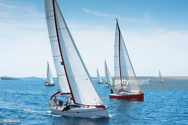 large number of sailboats racing at regatta - sailing team stock pictures, royalty-free photos & images