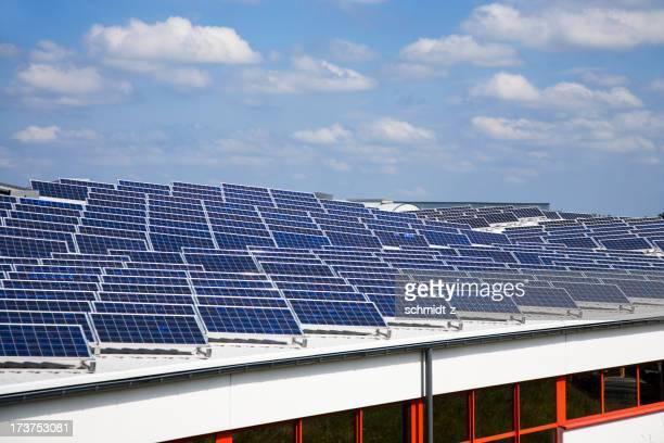 Pflanze mit einer großen Anzahl von Solarzellen