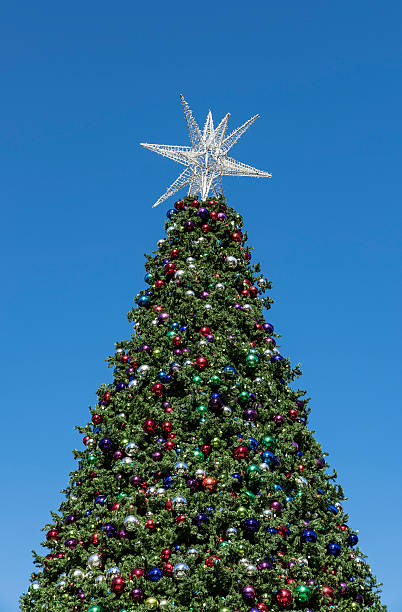 large outdoor christmas tree with decorations and star - Large Outdoor Christmas Star