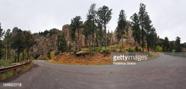 large panoramic along the needles highway in south dakota - pinnacle rock formation stock-fotos und bilder