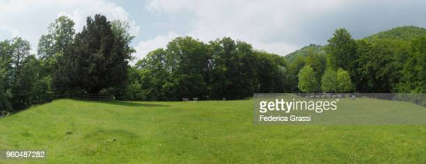 large panoramic of alpine meadow on monte generoso - may stock pictures, royalty-free photos & images