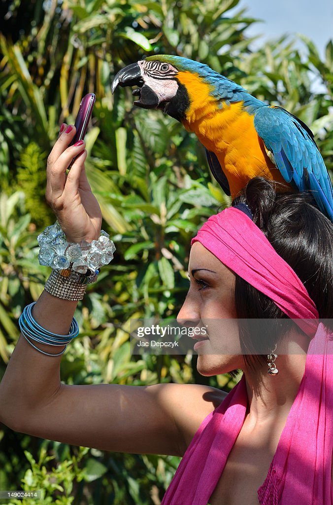 Large parrot answering her friend's mobile phone : Stock Photo