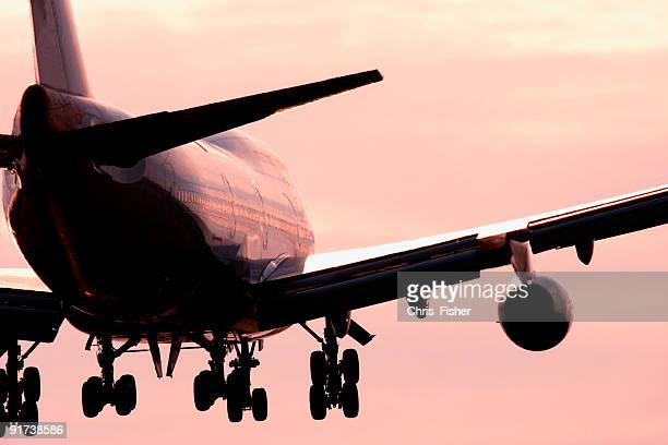 Large passenger airline in the pink sky