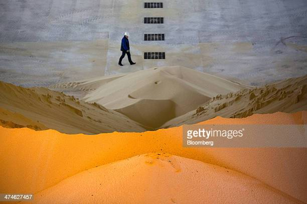 A large pile of phosphate fertilizer is seen stored inside a building at the OAO Phosagro plant in Cherepovets Russia on Friday Feb 21 2014 OAO...