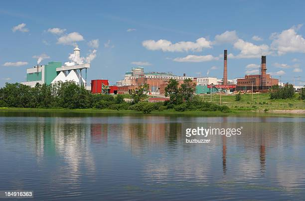 large pulp and paper industry - buzbuzzer stock pictures, royalty-free photos & images