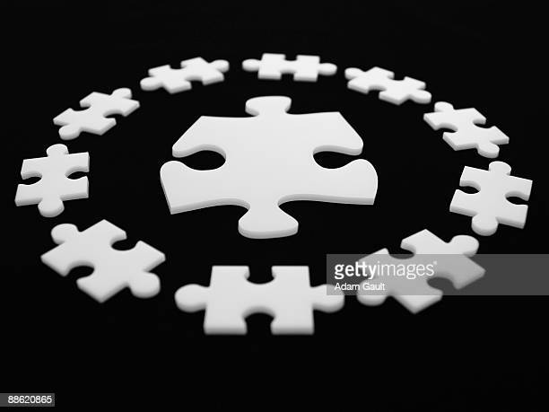 Large puzzle piece surrounded by smaller ones
