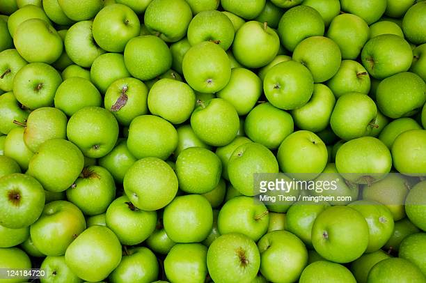 large quantity of green apples - mela foto e immagini stock