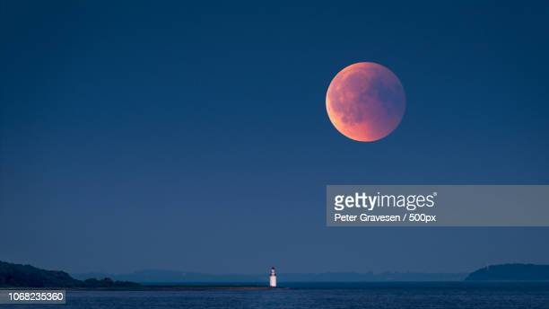 large red moon rising - moon stock pictures, royalty-free photos & images