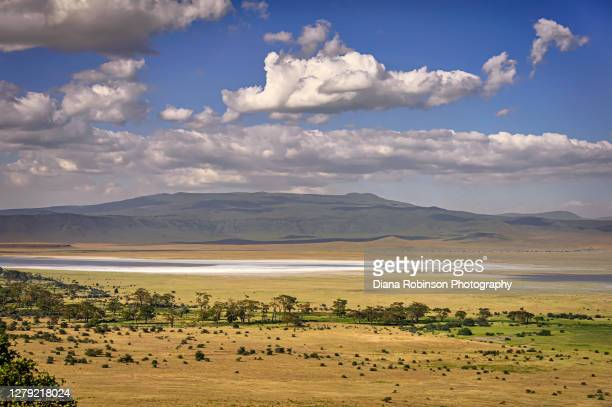 a large salt lake in the middle of ngorongoro crater, tanzania, east africa - ngorongoro conservation area stock pictures, royalty-free photos & images