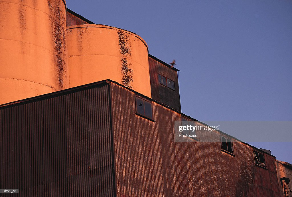large silos atop a storage warehouse stand under a blue sky as the sun sets : Foto de stock