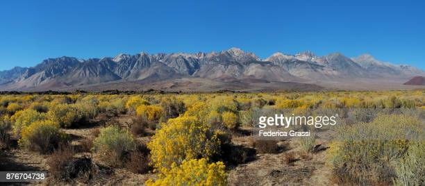 Large Size Panoramic Of The Eastern Sierra Nevada With Mount Whitney, California