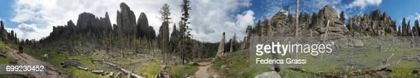 large size panoramic view of cathedral spires trail, the needles, south dakota - black hills south dakota stock photos and pictures