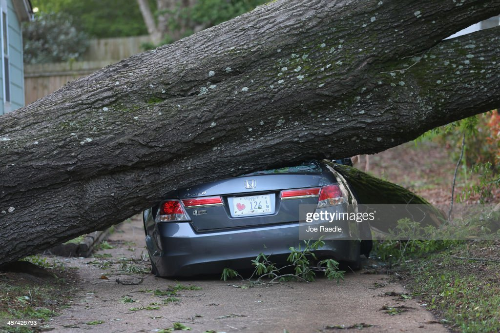 A large tree is seen resting on a car after a tornado struck on Monday, on April 30, 2014 in Tupelo, Mississippi. Deadly tornadoes ripped through the region over the last days, leaving more than a dozen dead.
