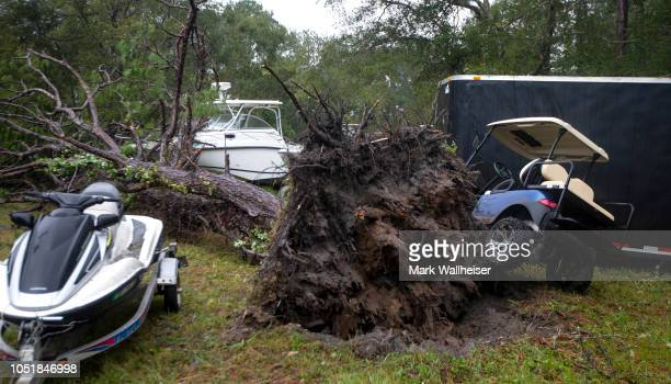 A large tree is shown toppled onto cars and boats that had been moved to higher ground to avoid damage from Hurricane Michael on October 10 2018 in...