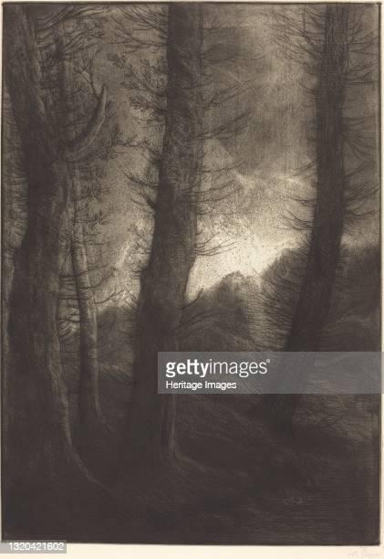 Large Trees Seen against the Sun . Artist Alphonse Legros.