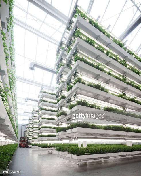 grande fattoria verticale all'interno di un'immagine serra generata digitalmente - composizione verticale foto e immagini stock