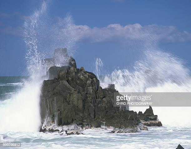 Large Wave on Reef, Tojinbo, Sakai, Fukui Prefecture, Japan