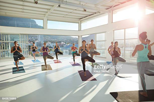 large yoga class standing on one leg - yoga studio stock pictures, royalty-free photos & images