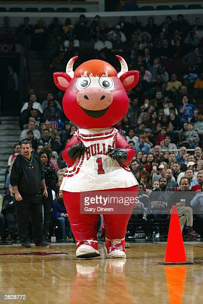 A larger version of Benny the Bull runs out on the court during the game between the Chicago Bulls and the Indiana Pacers on December 13 2003 at...