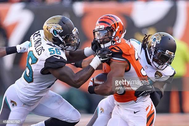 LaRoy Reynolds of the Jacksonville Jaguars and Tommie Campbell of the Jacksonville Jaguars combine to tackle Cedric Peerman of the Cincinnati Bengals...