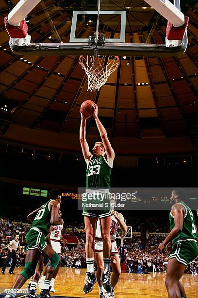Larry Bird of the Boston Celtics grabs a rebound against the New York Knicks during a game circa 1991 at Madison Square Garden in New York New York...