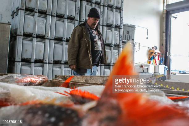 Larry Collins, who runs the San Francisco Community Fishing Association, looks over the Opah fish he has unloaded, at Fisherman's Wharf, in San...