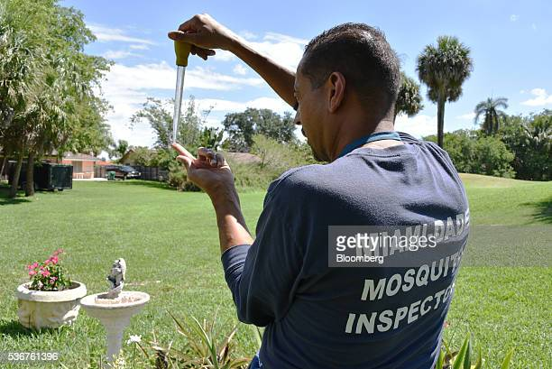 Larry Smart a MiamiDade County mosquito inspector examines a water sample in MiamiDade County Florida US on Thursday May 26 2016 Mosquito season...