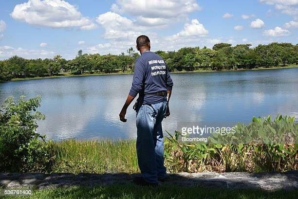 Larry Smart a MiamiDade County mosquito inspector looks for pools of standing water in MiamiDade County Florida US on Thursday May 26 2016 Mosquito...